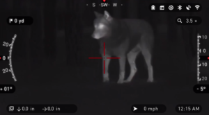 thermal-scope-coyote-hunting